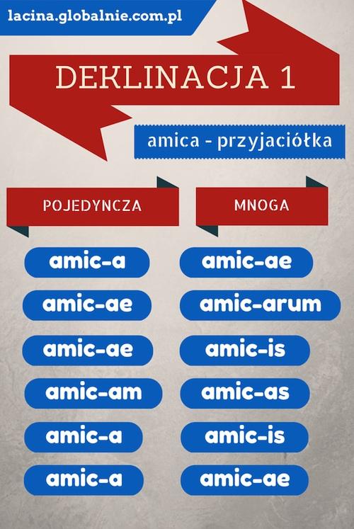 Jak uczyć się łaciny? - infografiki